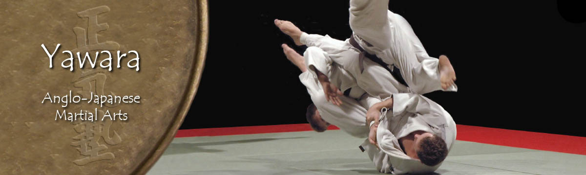 A Ju-Jutsu throw at a competition